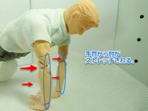 のびスト肘2