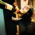 □ あーワインを呑み過ぎましたよ。  楽しい雰囲気でしたのでリミッターが外れて呑み過ぎてしまう。次の日の午前中まで二日酔いでした。大反省 ….. だが また呑んでしまう。酒は不思議な水だ。#ワイン #神楽坂 #ラジオ  #ラジオ好き  #followforfollowback  #followme  #instagood  #ふぉろば100  #fmgig #かわさきfm #調布fm